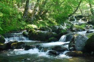 「川の流れ」の画像検索結果